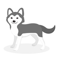 husky breed dog icon flat cartoon style cute vector image vector image