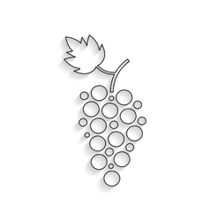 black outline grapes icon with shadow vector image vector image