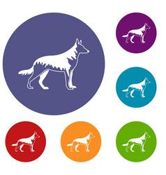 shepherd dog icons set vector image vector image