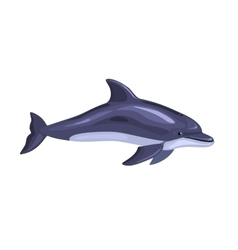 cartoon isolated dolphin vector image