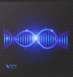 dna molecule structure light effect vector image