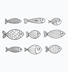 Set of stylized fishes collection of vector