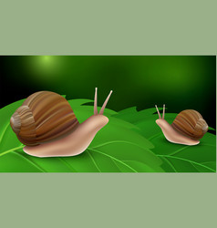 Snail on leaves concept background realistic vector