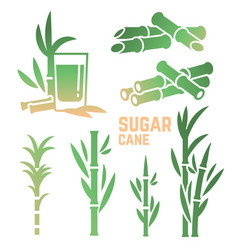 sugar cane silhouettes icons isolated on white vector image