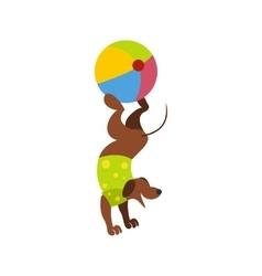 Dog ball balancing act icon vector