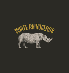 White rhinoceros engraved hand drawn in old sketch vector