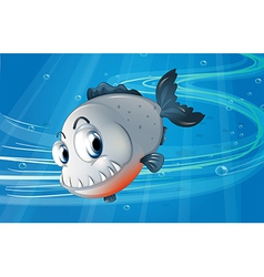 A piranha under the sea vector