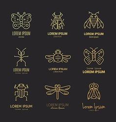 Bugs Logo vector image