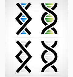 Dna strand helix vector