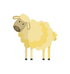 flat cute hand drawn fluffy sheep vector image