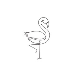 one single line drawing exotic flamingo vector image