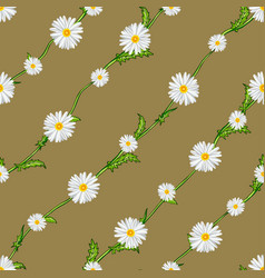 seamless pattern from field chamomiles on stems vector image