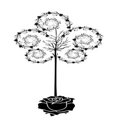 Tree of roses vector