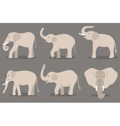 White elephant set vector