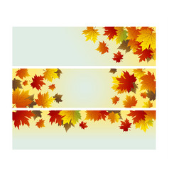 autumn background design of maple leaves vector image vector image