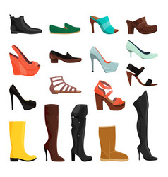 women shoes in different styles vector image