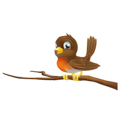cute robin sitting on a tree branch vector image vector image