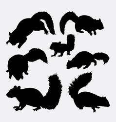 squirrel mammal animal silhouette vector image