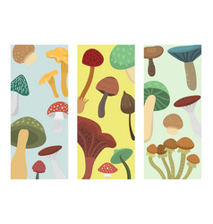 Amanita fly agaric toadstool mushrooms cards vector