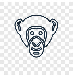 chimpanzee concept linear icon isolated on vector image