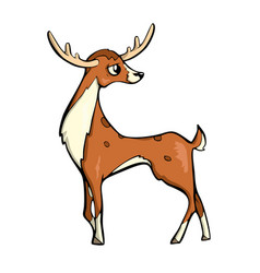 deer friendly cute forest animal cartoon vector image