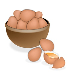Fresh Eggs in Brown Bowl vector image