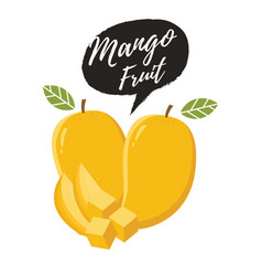 mango fruit vector image