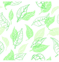 nature seamless pattern tea leaves vector image