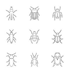 Order coleoptera icons set outline style vector