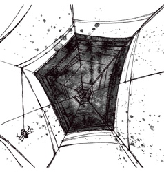 hand pictured grunge spiders web vector image