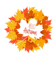 hello autumn the decor of the autumn leaves white vector image