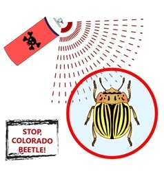 Spray against insects vector image vector image