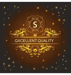 Greeting card lights style logo ornament vector image vector image