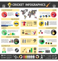 Cricket Colored Infographics vector