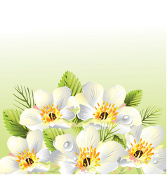 floral graphic background design vector image