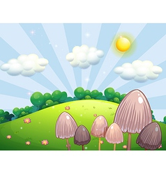 Group of mushroom plants near the hill vector