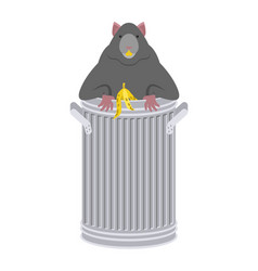 rat in garbage can rodent in trash big mouse in vector image