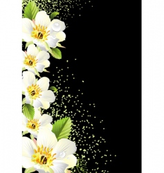 floral graphic background design vector image