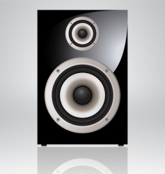 audio speaker vector image vector image