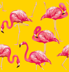 tropical bird flamingo background seamless pattern vector image