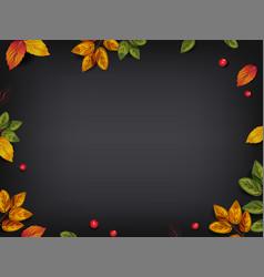 autumn leaves on blackboard vector image