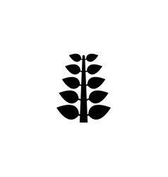 branch with leaves tree sprout flat icon vector image