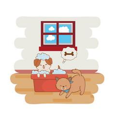 cute funny pets cartoon vector image