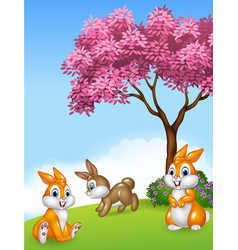 Cute little bunny in grass on meadow on Summer day vector image