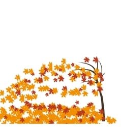Maple tree in the wind autumn Fallen red and vector