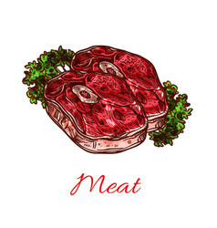 meat steak isolated sketch for food design vector image
