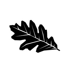Oak leaf black silhouette icon isolated on a white vector
