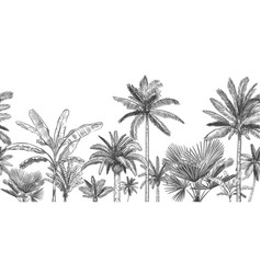 seamless horizontal tropical background hand vector image