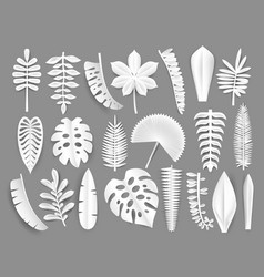Tropical white paper cut leaves trendy summer vector