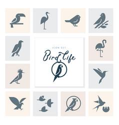 birds icon set in flat style for product vector image